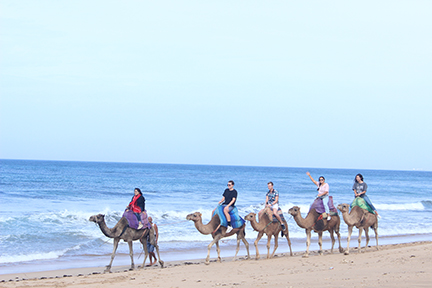 Students on camel in Morocco